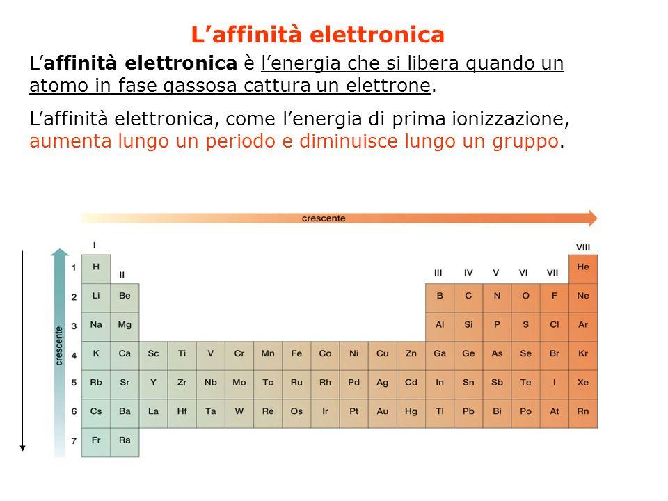 Laffinità elettronica Laffinità elettronica è lenergia che si libera quando un atomo in fase gassosa cattura un elettrone. Laffinità elettronica, come