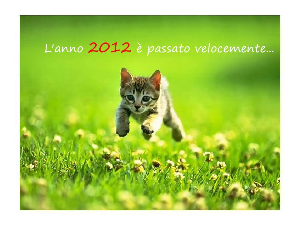 L anno 2012 è passato velocemente...