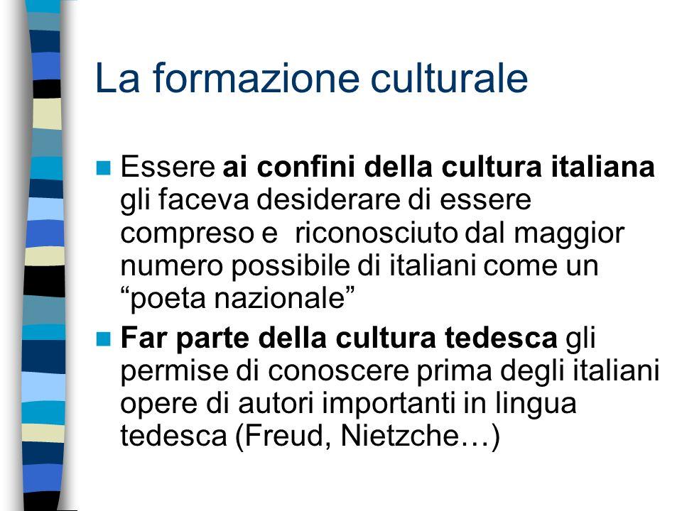 La formazione culturale Essere ai confini della cultura italiana gli faceva desiderare di essere compreso e riconosciuto dal maggior numero possibile