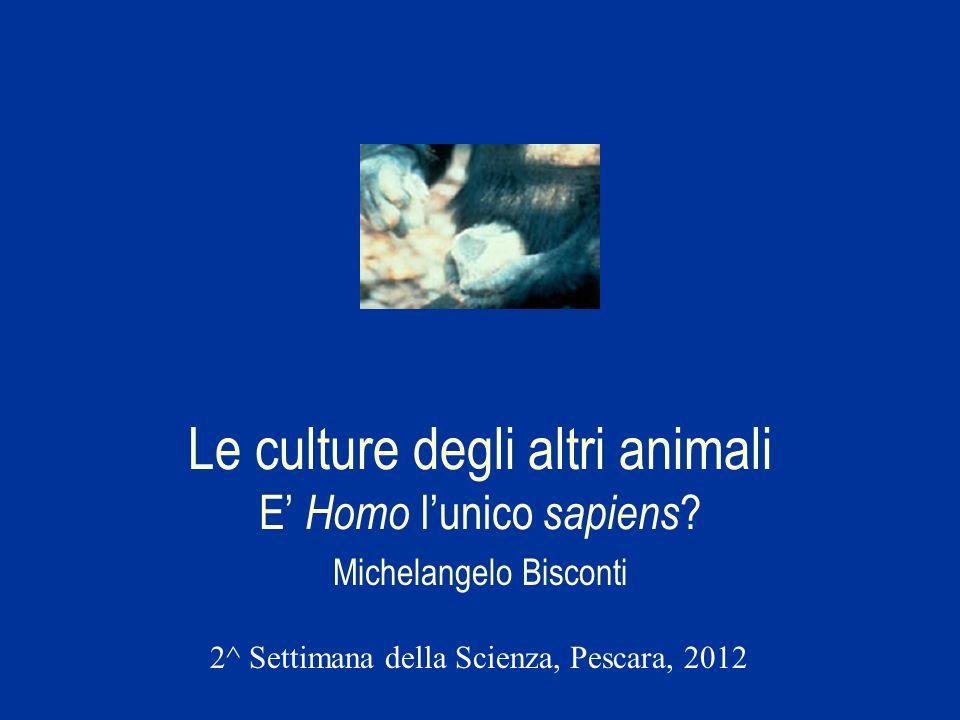 Le culture degli altri animali E Homo lunico sapiens ? Michelangelo Bisconti 2^ Settimana della Scienza, Pescara, 2012