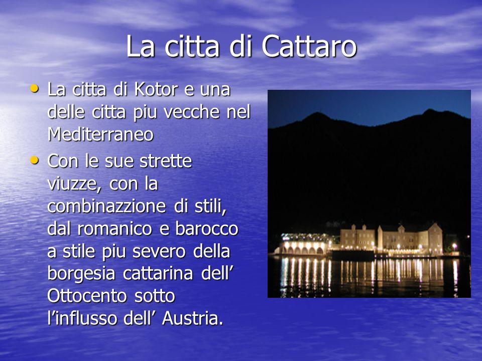 La citta di Cattaro La citta di Kotor e una delle citta piu vecche nel Mediterraneo La citta di Kotor e una delle citta piu vecche nel Mediterraneo Co