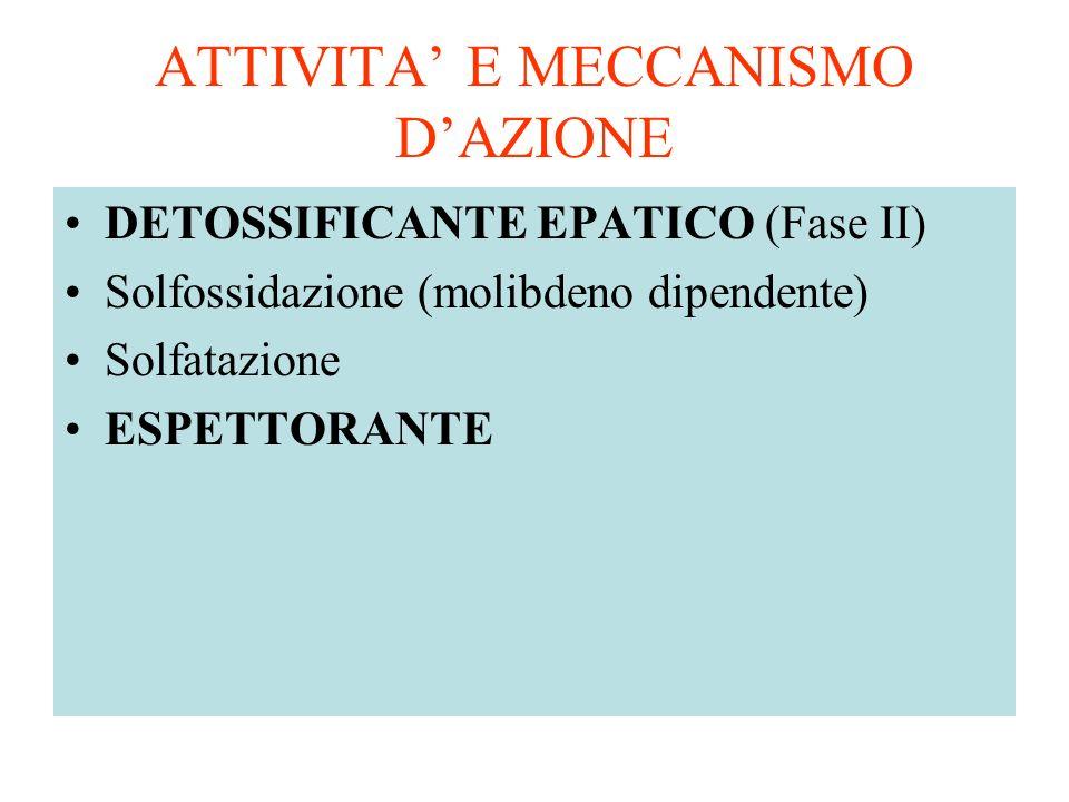 ATTIVITA E MECCANISMO DAZIONE DETOSSIFICANTE EPATICO (Fase II) Solfossidazione (molibdeno dipendente) Solfatazione ESPETTORANTE