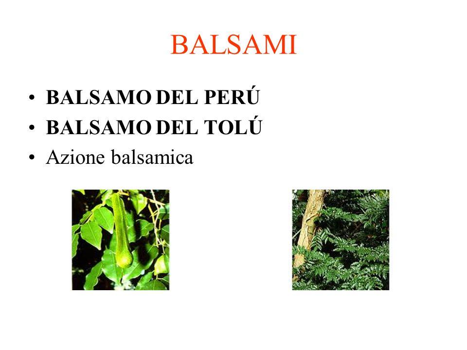 BALSAMI BALSAMO DEL PERÚ BALSAMO DEL TOLÚ Azione balsamica