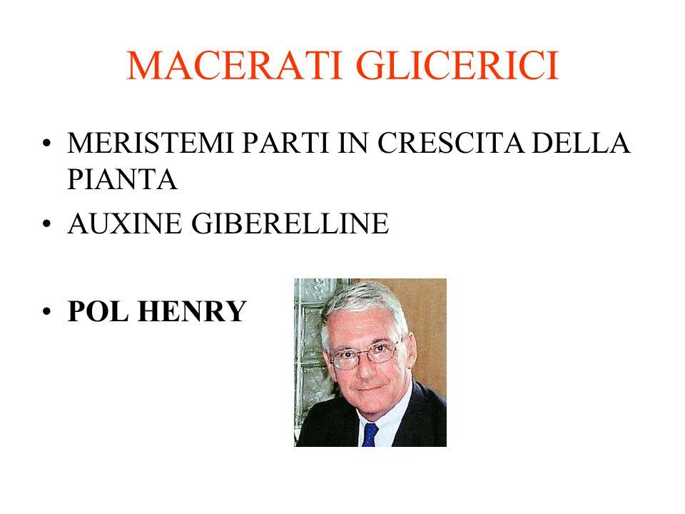 MACERATI GLICERICI MERISTEMI PARTI IN CRESCITA DELLA PIANTA AUXINE GIBERELLINE POL HENRY