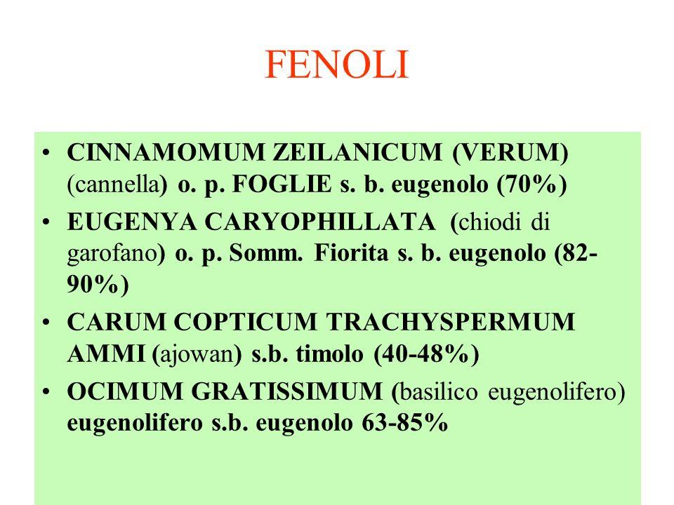 FENOLI CINNAMOMUM ZEILANICUM (VERUM) (cannella) o.
