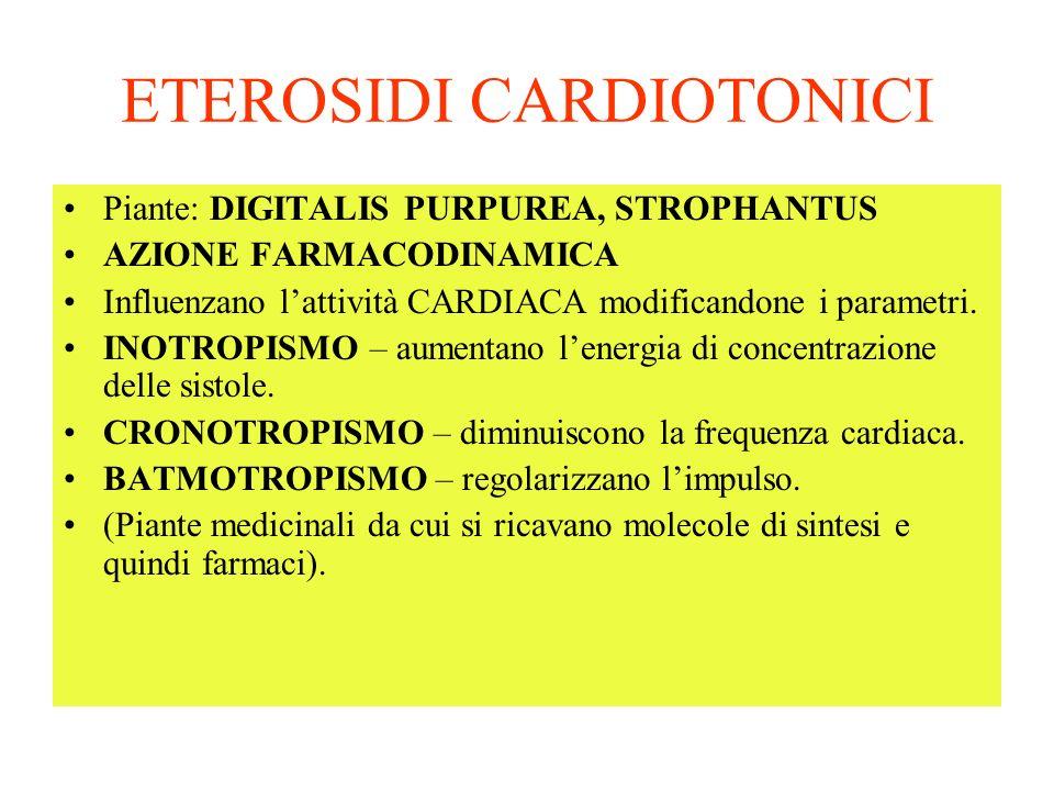 ETEROSIDI CARDIOTONICI Piante: DIGITALIS PURPUREA, STROPHANTUS AZIONE FARMACODINAMICA Influenzano lattività CARDIACA modificandone i parametri.