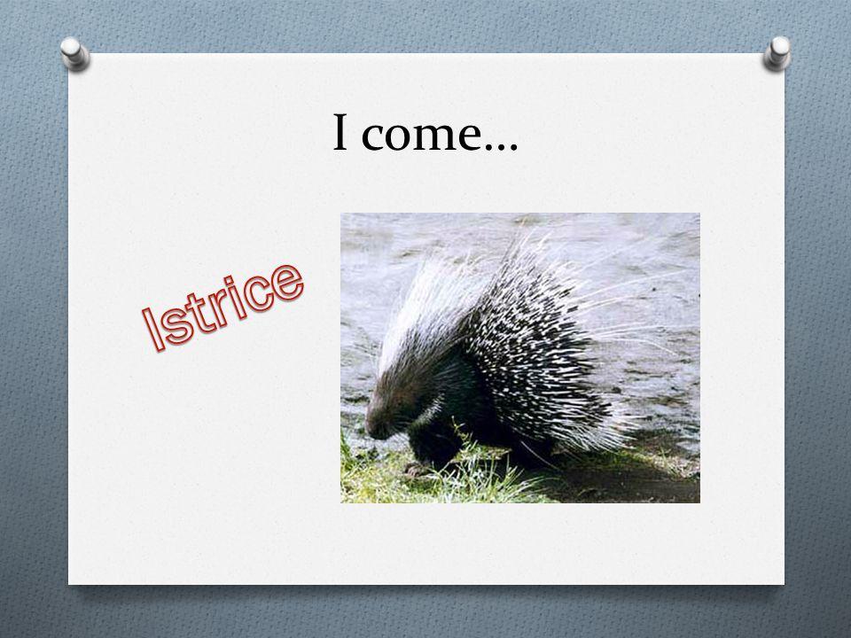 I come…