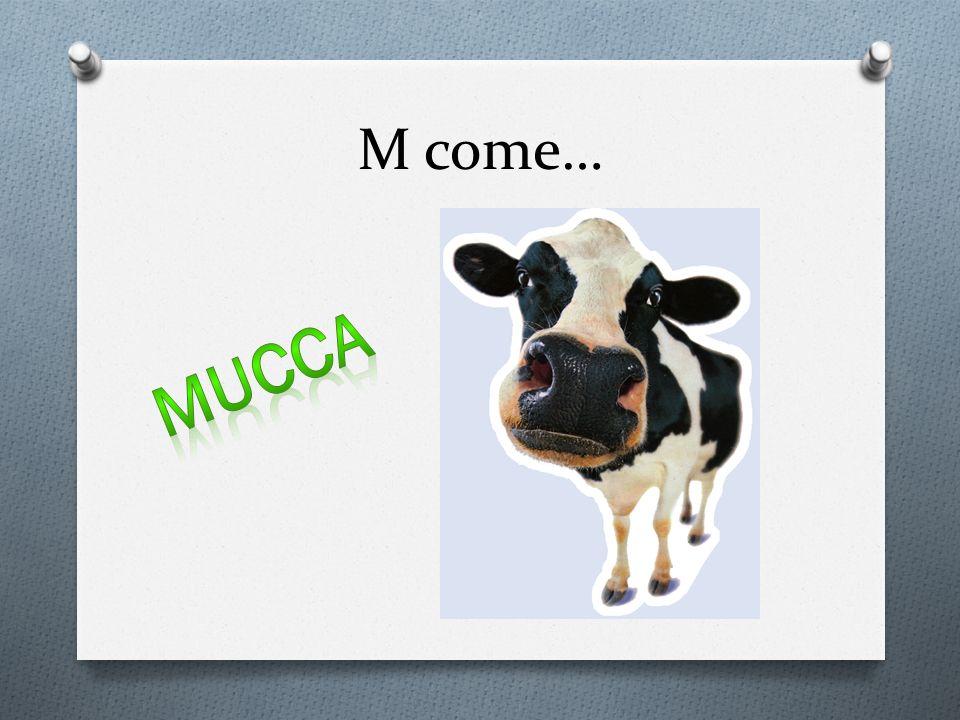 M come…