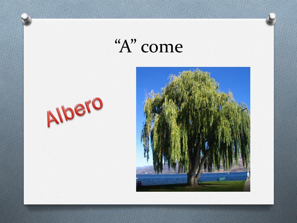 A come