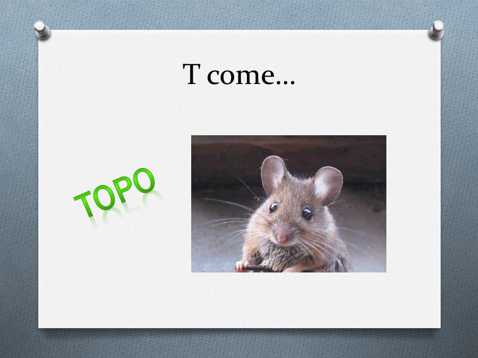T come…