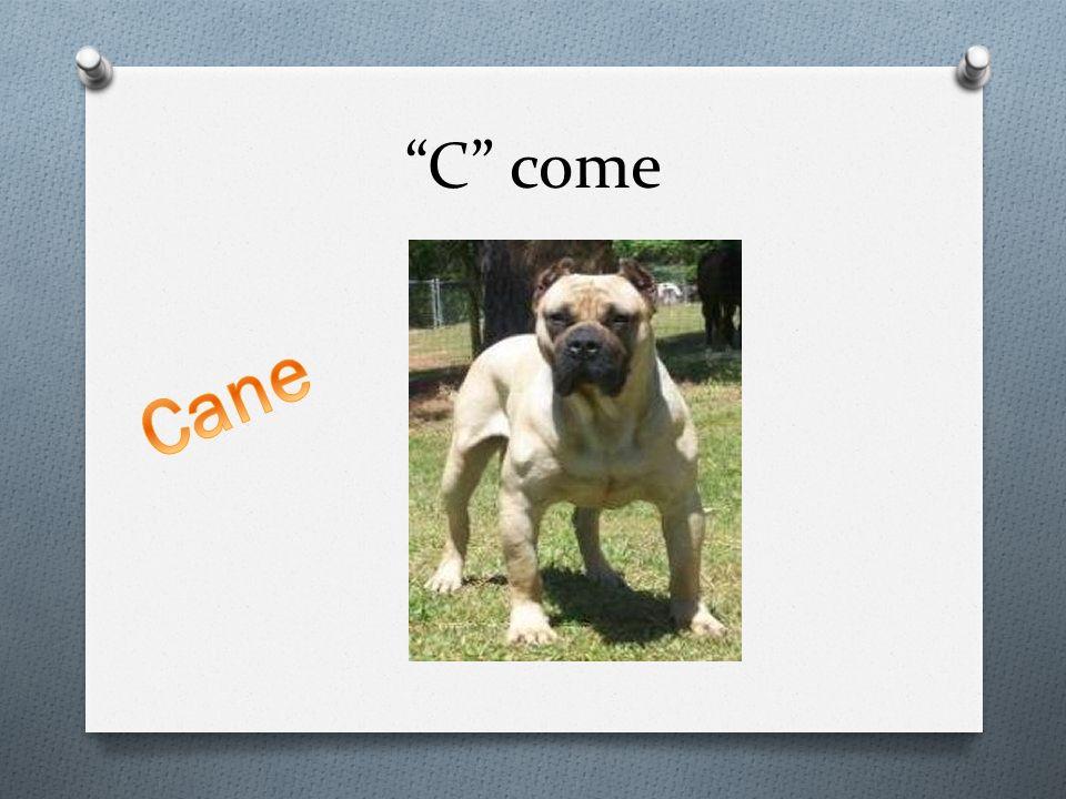 C come