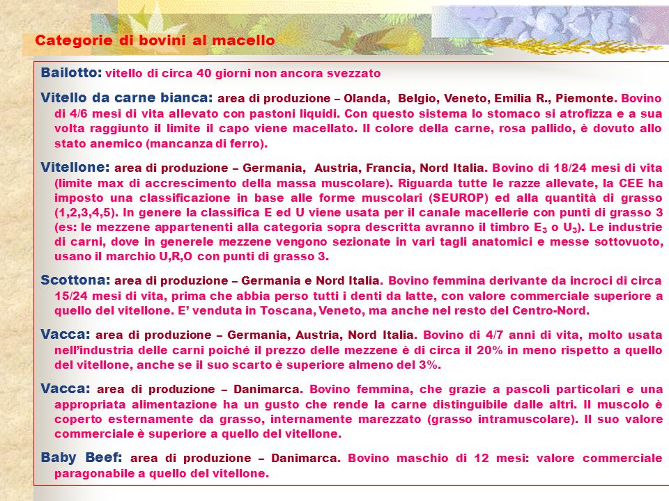 Sanato: prodotto Piemontese.