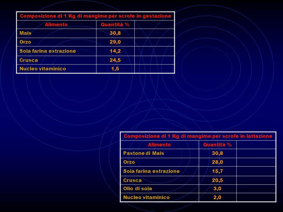 Composizione di 1 Kg di mangime per scrofe in gestazione AlimentoQuantità % Mais30,8 Orzo29,0 Soia farina estrazione14,2 Crusca24,5 Nucleo vitaminico1
