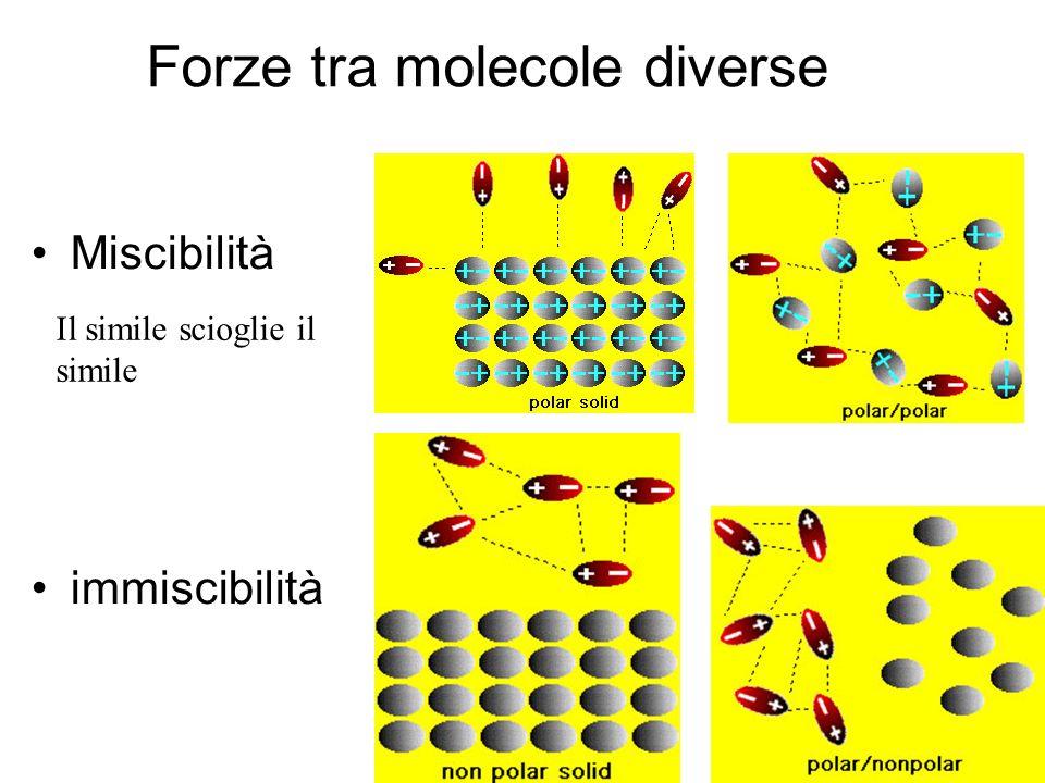 Forze tra molecole diverse Miscibilità immiscibilità Il simile scioglie il simile