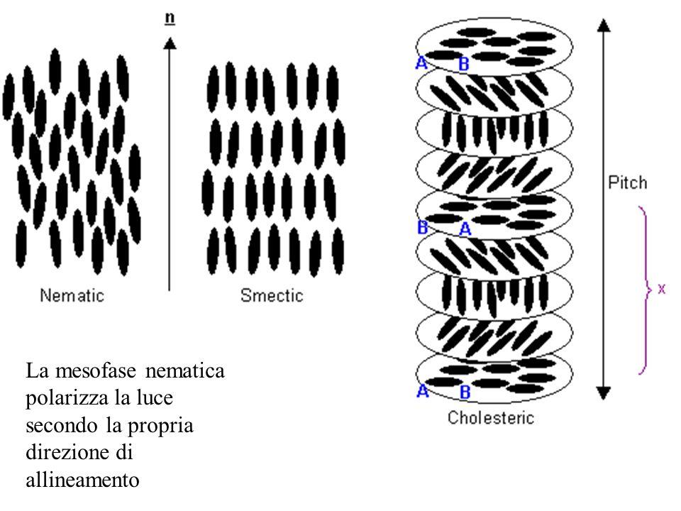La mesofase nematica polarizza la luce secondo la propria direzione di allineamento