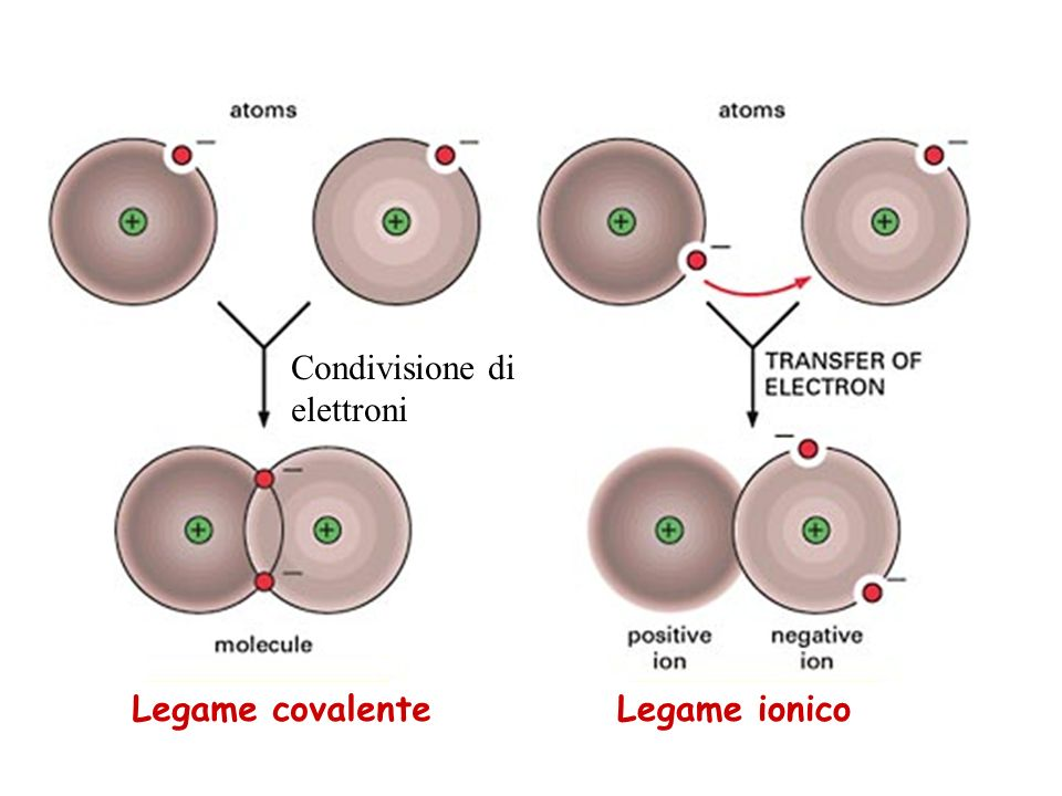 Legame covalenteLegame ionico Condivisione di elettroni