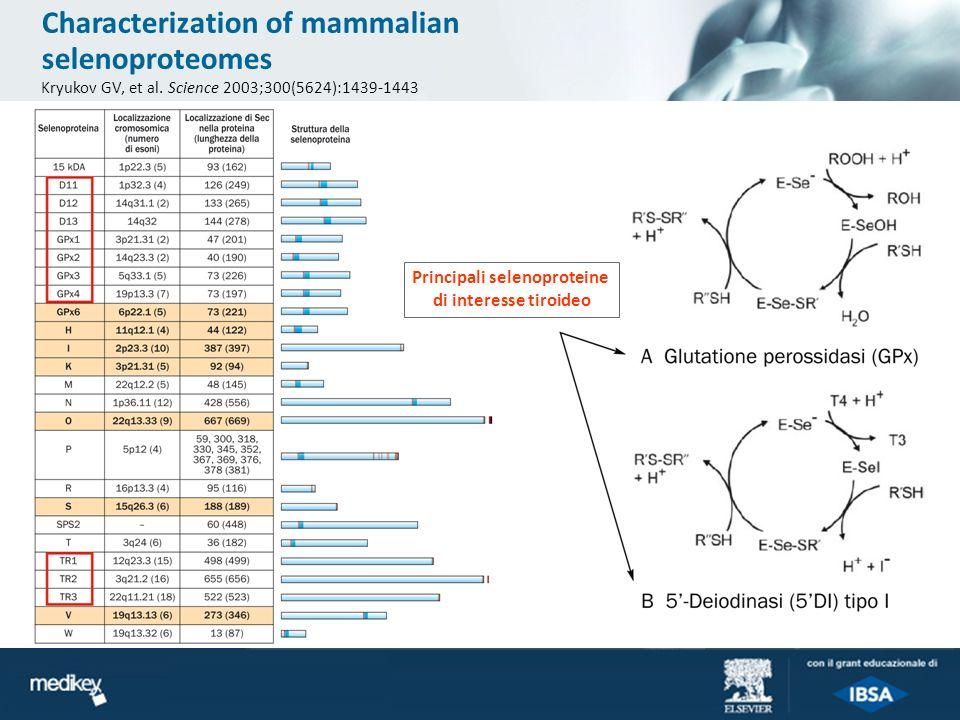 Characterization of mammalian selenoproteomes Kryukov GV, et al. Science 2003;300(5624):1439-1443 Principali selenoproteine di interesse tiroideo