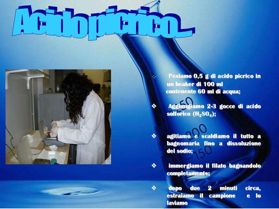 Coloranti acidi e basici : legami salini LANA, SETA E POLIAMMIDI dotati di gruppi acidi e basici Interazione dellacido picrico con il tessuto: Le fibr