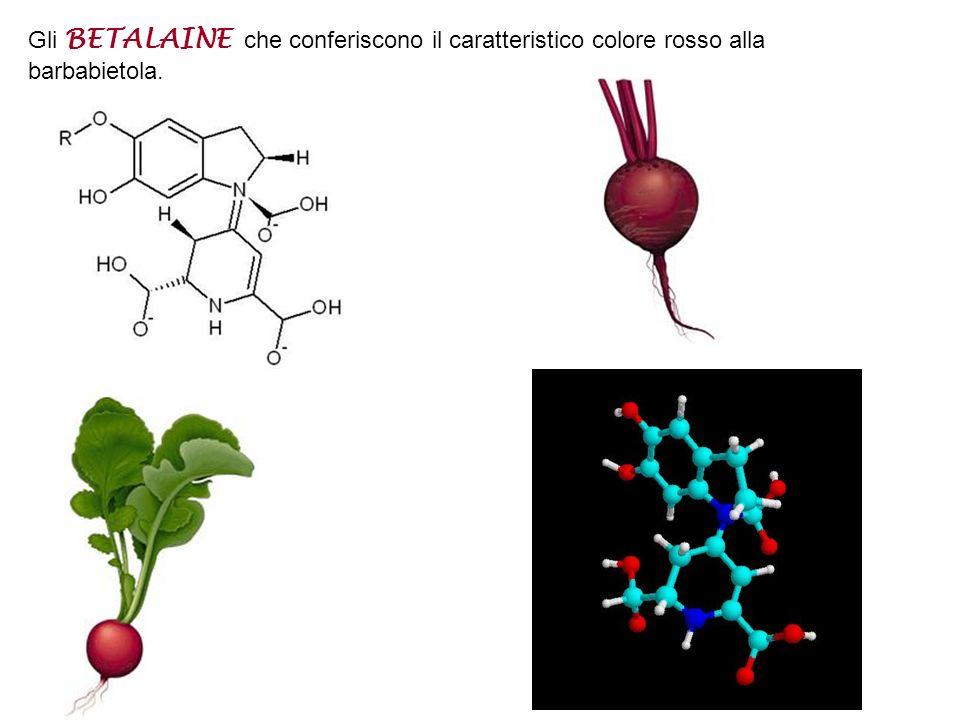 Gli ANTOCIANI, che conferiscono colorazione viola\blu all'uva, alle melanzane e ad alcuni fiori.