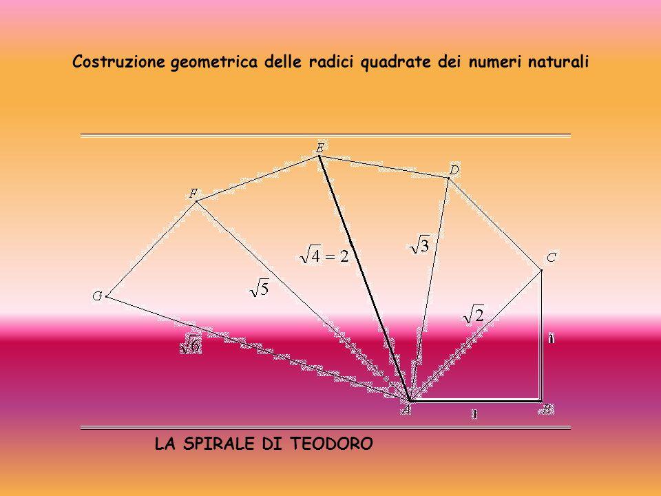 Costruzione geometrica delle radici quadrate dei numeri naturali LA SPIRALE DI TEODORO