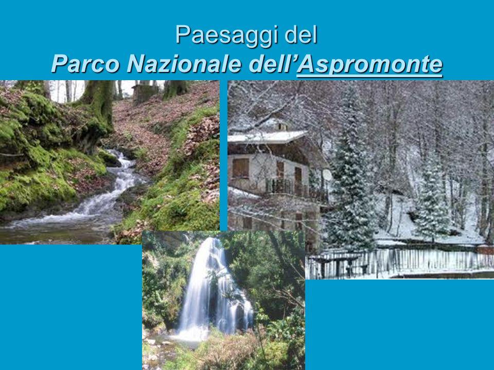 Il parco nazionale dellAspromonte si trova in …..? Calabria