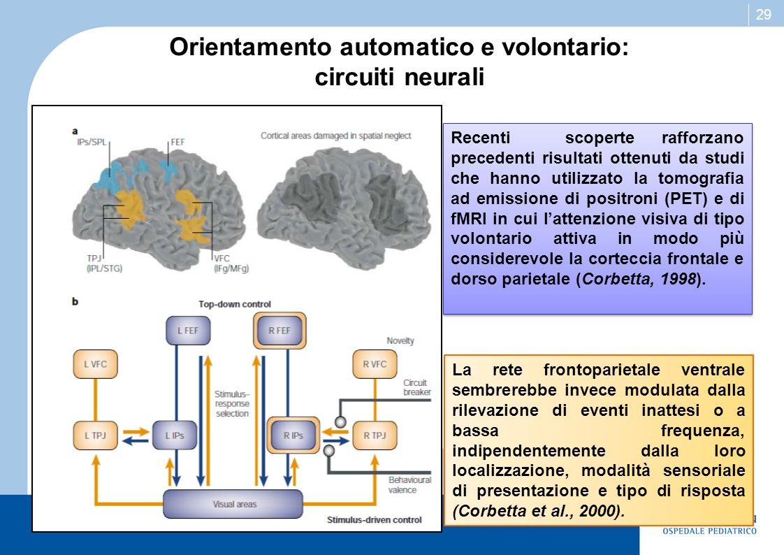 29 Orientamento automatico e volontario: circuiti neurali Recenti scoperte rafforzano precedenti risultati ottenuti da studi che hanno utilizzato la t