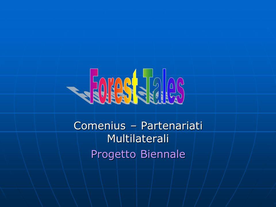 Comenius – Partenariati Multilaterali Progetto Biennale