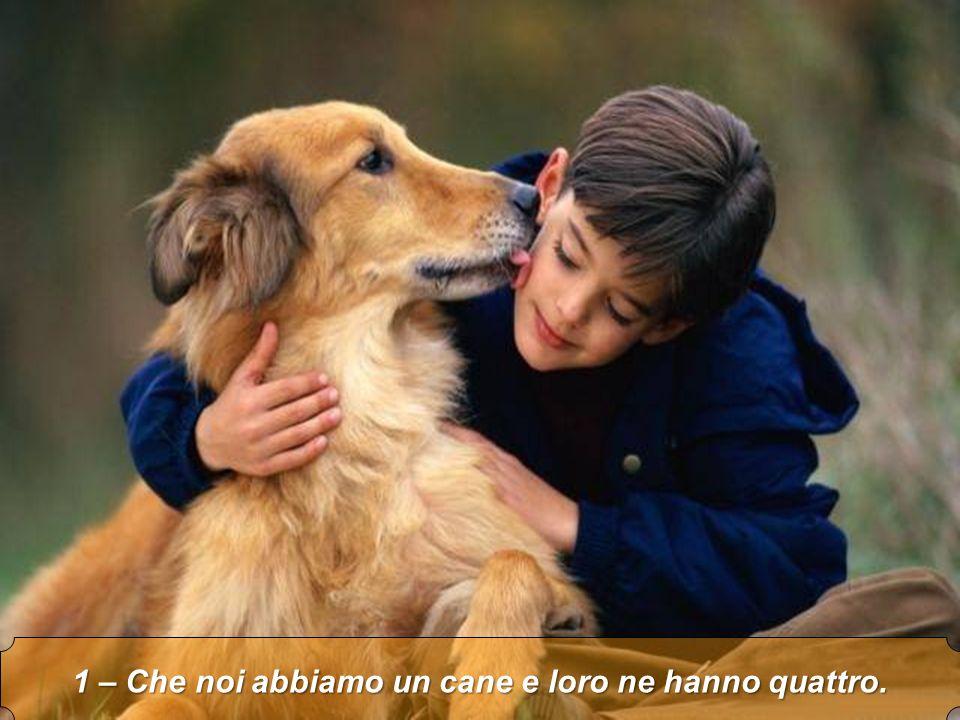 1 – Che noi abbiamo un cane e loro ne hanno quattro.