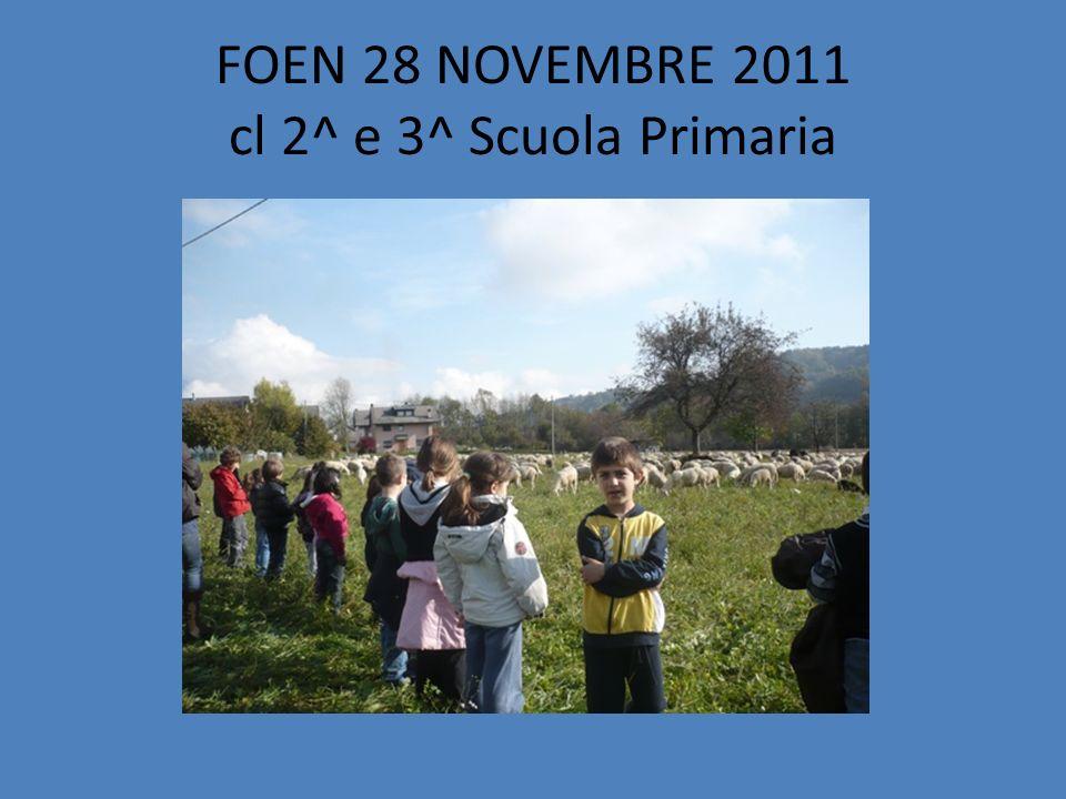 FOEN 28 NOVEMBRE 2011 cl 2^ e 3^ Scuola Primaria