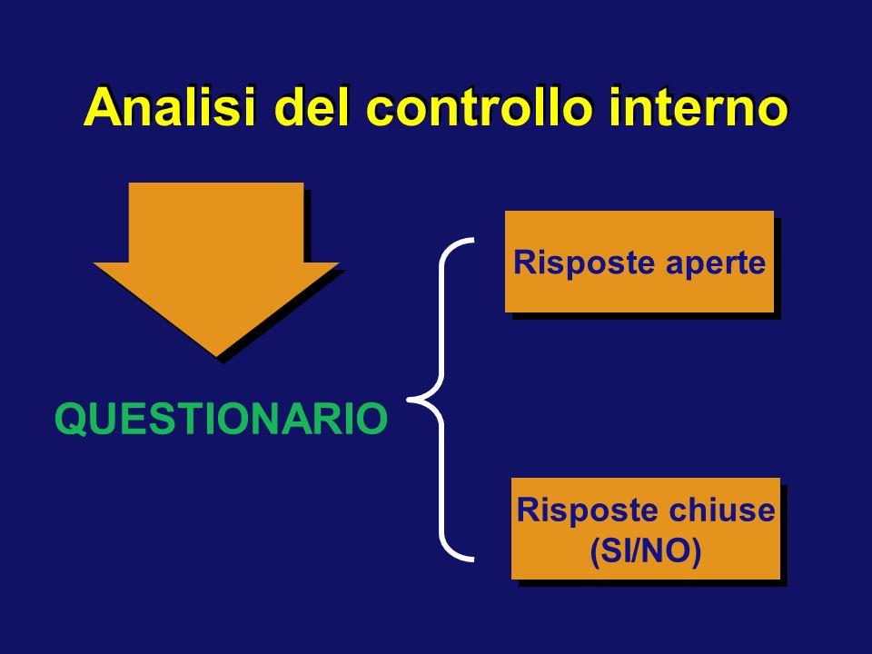Analisi del controllo interno QUESTIONARIO Risposte chiuse (SI/NO) Risposte chiuse (SI/NO) Risposte aperte