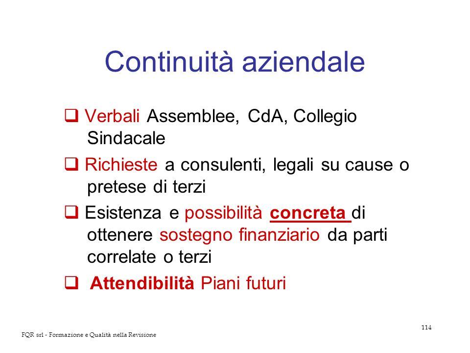 114 FQR srl - Formazione e Qualità nella Revisione Continuità aziendale Verbali Assemblee, CdA, Collegio Sindacale Richieste a consulenti, legali su c