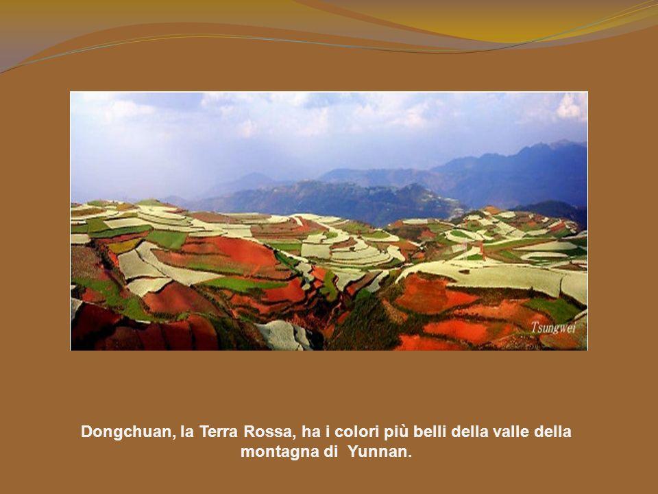 Il suolo, di un castano rossastro straordinario, è prodotto dal ferro e da altri metalli ossidati. In queste montagne e colline, ogni appezzamento di