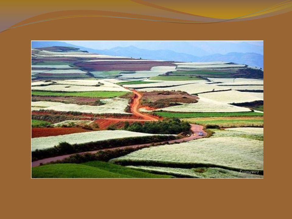 Dongchuan, la Terra Rossa, ha i colori più belli della valle della montagna di Yunnan.
