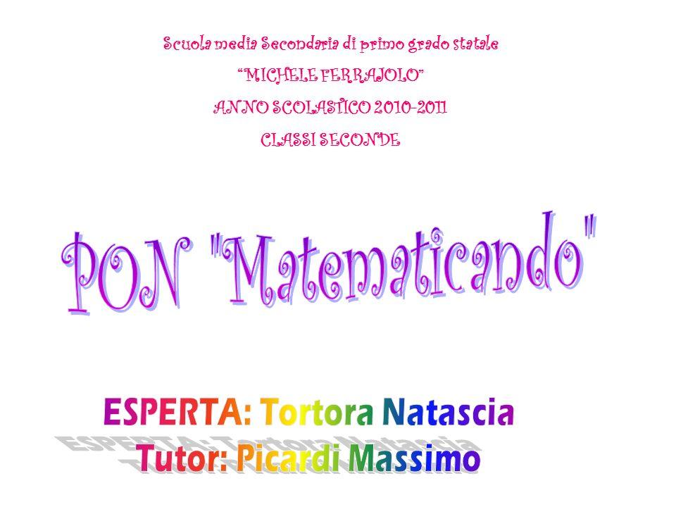 Scuola media Secondaria di primo grado statale MICHELE FERRAJOLO ANNO SCOLASTICO 2010-2011 CLASSI SECONDE