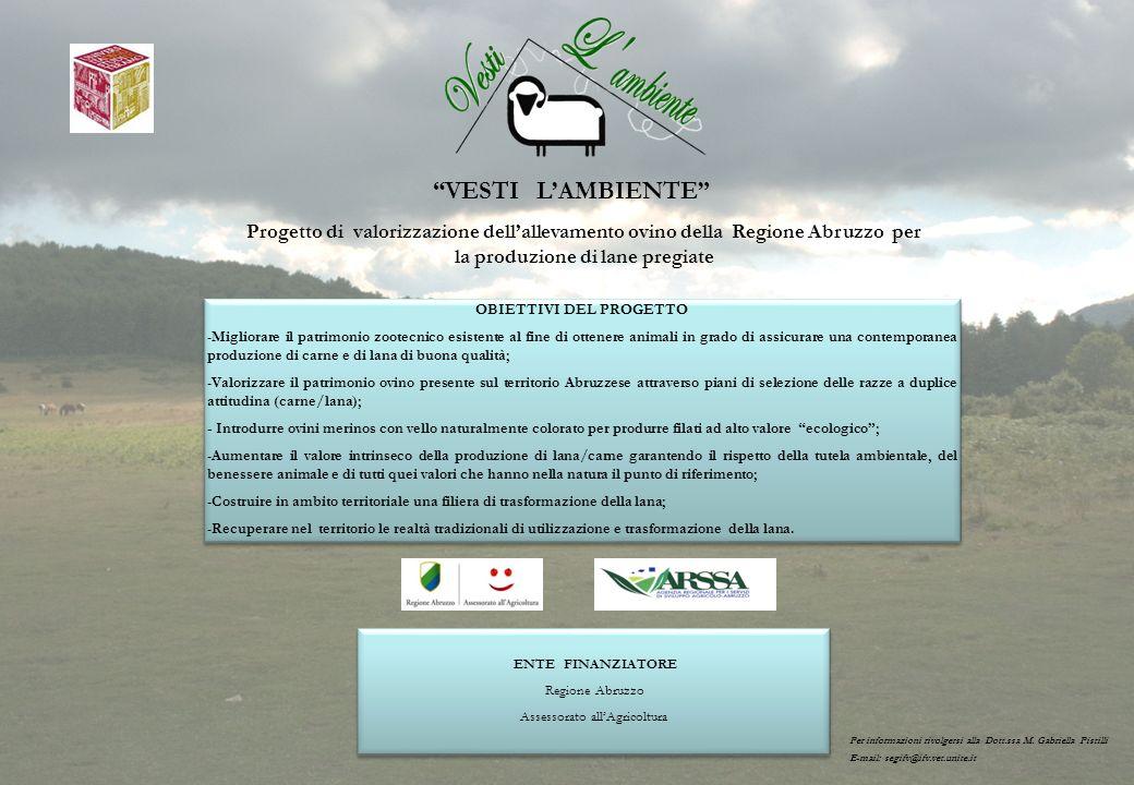 VESTI LAMBIENTE Progetto di valorizzazione dellallevamento ovino della Regione Abruzzo per la produzione di lane pregiate ENTE FINANZIATORE Regione Ab