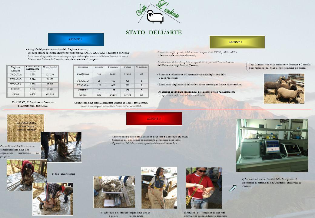 STATO DELLARTE - Anagrafe del patrimonio ovino della Regione Abruzzo; - Incontri con gli operatori del settore : responsabili ARSSA, ARA, APA e alleva
