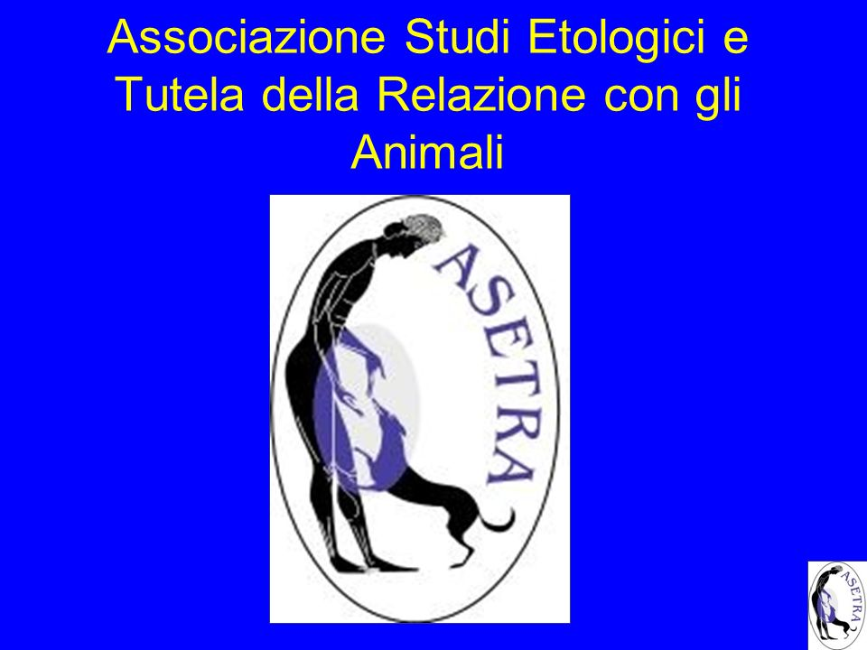 Associazione Studi Etologici e Tutela della Relazione con gli Animali