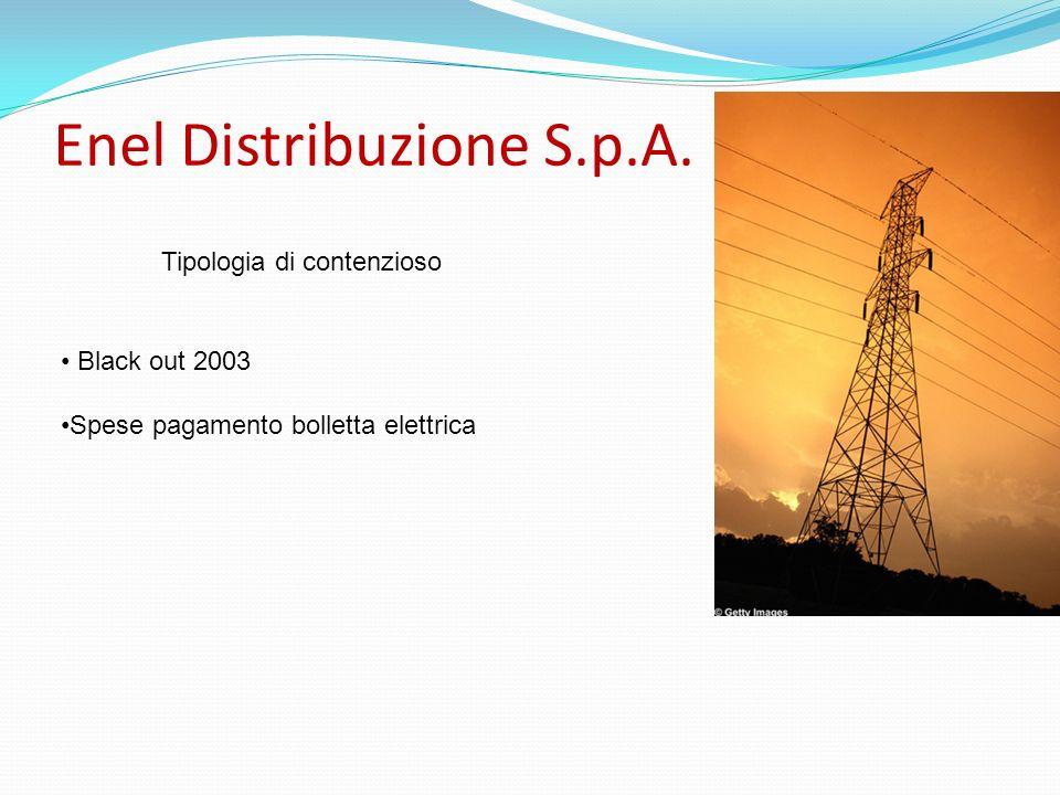 Enel Distribuzione S.p.A. Tipologia di contenzioso Black out 2003 Spese pagamento bolletta elettrica