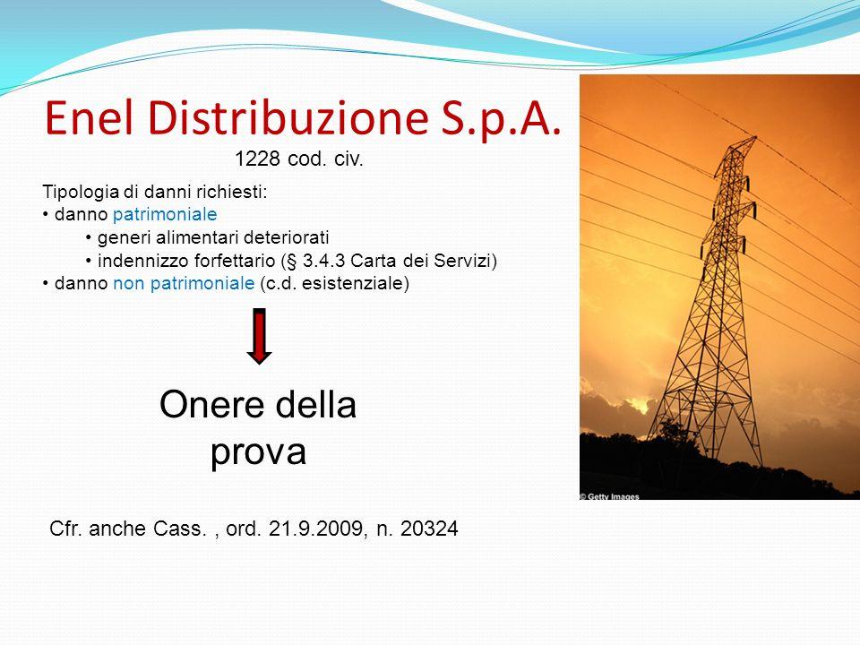 Enel Distribuzione S.p.A. Tipologia di danni richiesti: danno patrimoniale generi alimentari deteriorati indennizzo forfettario (§ 3.4.3 Carta dei Ser