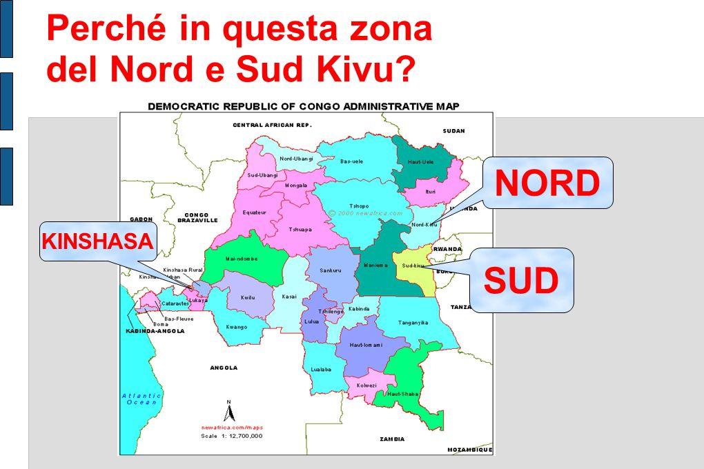 Perché in questa zona del Nord e Sud Kivu.