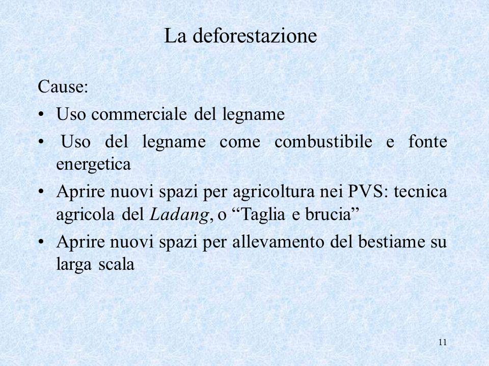 11 La deforestazione Cause: Uso commerciale del legname Uso del legname come combustibile e fonte energetica Aprire nuovi spazi per agricoltura nei PV