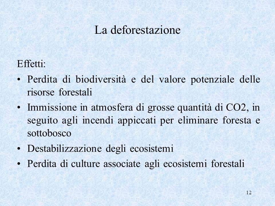 12 La deforestazione Effetti: Perdita di biodiversità e del valore potenziale delle risorse forestali Immissione in atmosfera di grosse quantità di CO