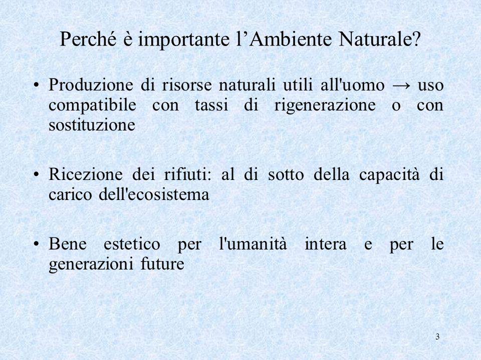 3 Perché è importante lAmbiente Naturale? Produzione di risorse naturali utili all'uomo uso compatibile con tassi di rigenerazione o con sostituzione