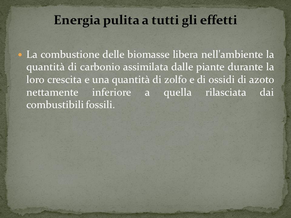 Energia pulita a tutti gli effetti La combustione delle biomasse libera nell'ambiente la quantità di carbonio assimilata dalle piante durante la loro