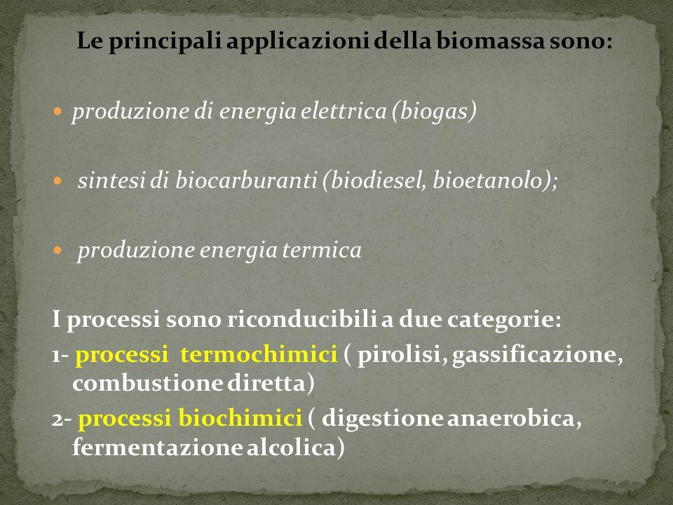Le principali applicazioni della biomassa sono: produzione di energia elettrica (biogas) sintesi di biocarburanti (biodiesel, bioetanolo); produzione