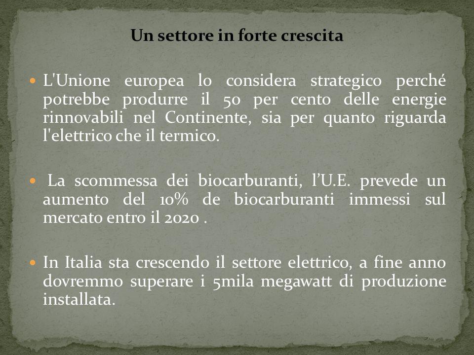 Un settore in forte crescita L'Unione europea lo considera strategico perché potrebbe produrre il 50 per cento delle energie rinnovabili nel Continent