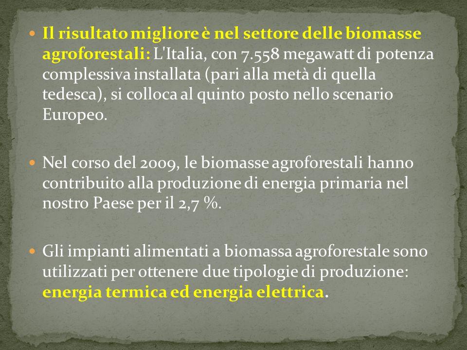 Il risultato migliore è nel settore delle biomasse agroforestali: L'Italia, con 7.558 megawatt di potenza complessiva installata (pari alla metà di qu