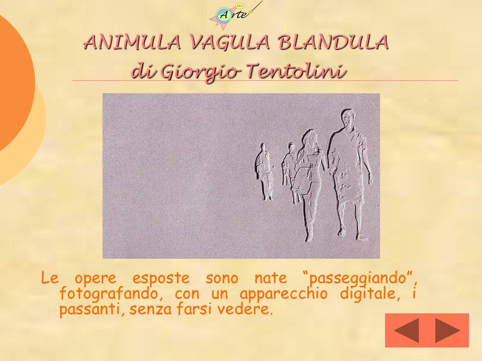 ANIMULA VAGULA BLANDULA di Giorgio Tentolini Le opere esposte sono nate passeggiando, fotografando, con un apparecchio digitale, i passanti, senza far