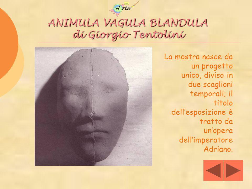 foto La mostra nasce da un progetto unico, diviso in due scaglioni temporali; il titolo dellesposizione è tratto da unopera dellimperatore Adriano. AN
