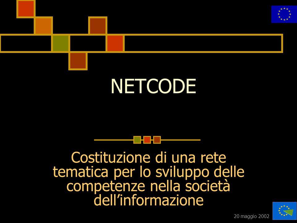 20 maggio 2002 NETCODE Costituzione di una rete tematica per lo sviluppo delle competenze nella società dellinformazione
